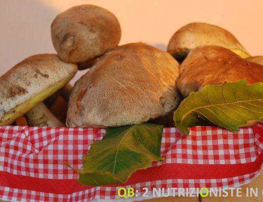 Funghi carne vegetale
