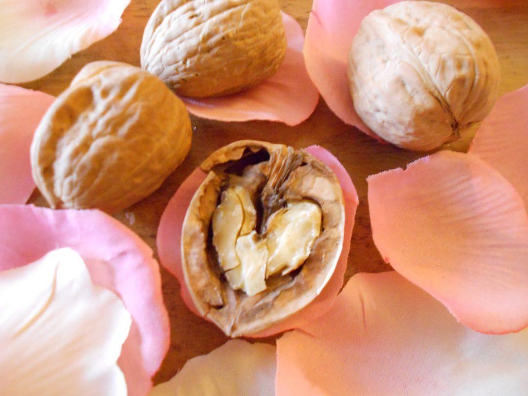 Buon San Valentino con le noci, amiche del cuore!